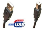 ACC USB 2.0 A-B CABLE BLACK (10FT) CUABMM10B